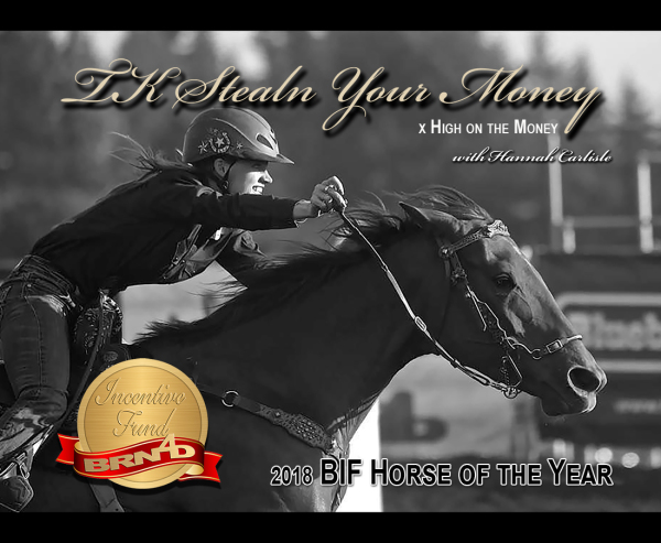 2018 Horse of the Year