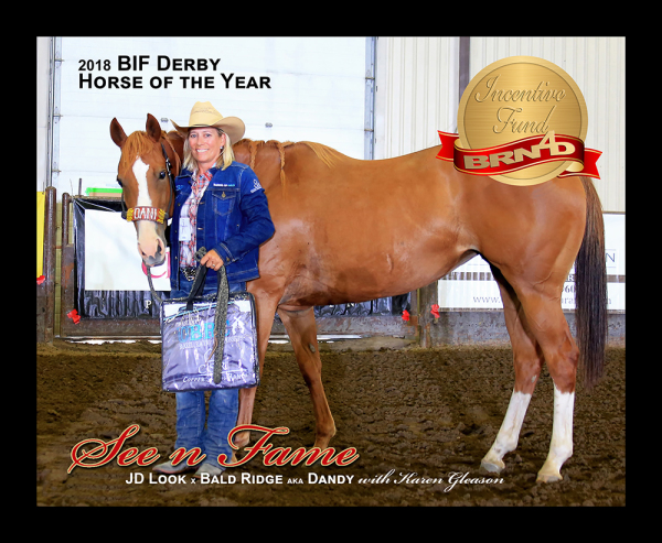2018 Derby Horse of the Year