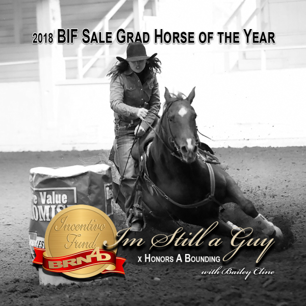 2018 Sale Grad Horse of the Year