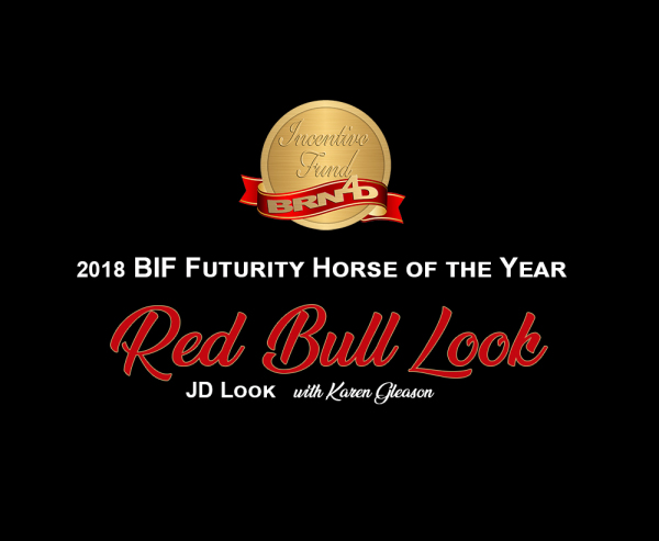 2018 Futurity Horse of the Year
